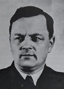 Petrus Johannes de Kok